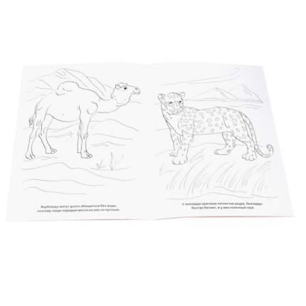 """Раскраска Умка """"Животные с Чебурашкой"""" 184613"""
