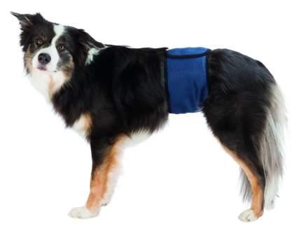 Пояс Trixie для собак для кобелей M 45–55 см темно-синий
