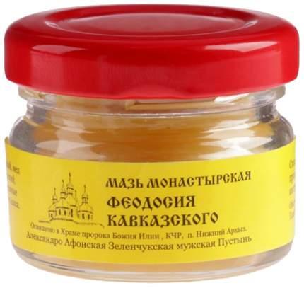 Мазь Монастырская Бизорюк Фабрика здоровья Феодосия Кавказского 25 мл