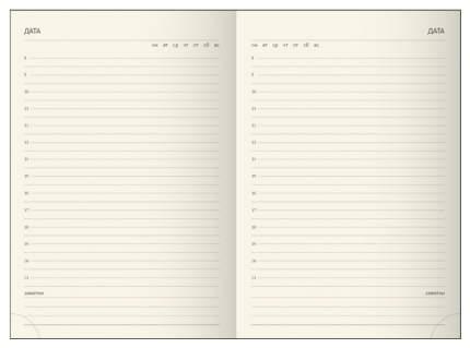 Ежедневник недатированный ErichKrause «Ruggine» на магните, A6+, 168 листов, синий