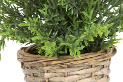Искусственное растение в горшке Hoff 317002290