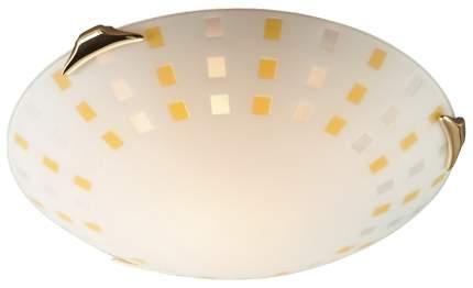 Потолочный светильник Sonex Quadro 263