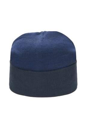 Шапка мужская Mellizos H9- 3P 63-1 синяя 58-60