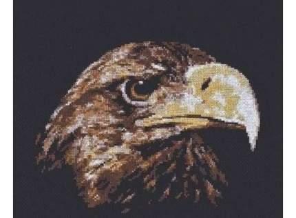 Набор для вышивания Палитра Взгляд орла