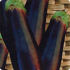 Семена Баклажан Скороспелый, 20 шт, Сибирский сад