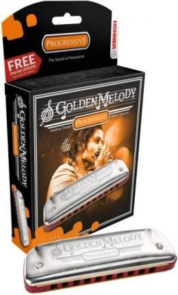 Губная гармоника диатоническая HOHNER Golden Melody 542/20 D(+доступ к урокам на 30 дн.)