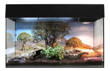 Террариум LUCKY REPTILE Стартовый комплект для Сухопутных Черепах, черный, 80 x 52 x 40 см