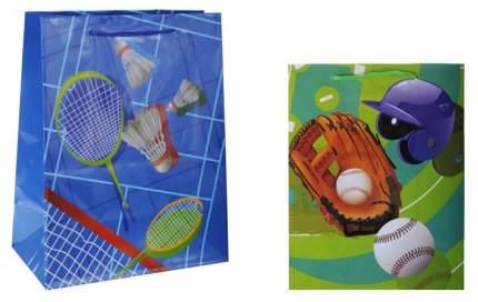 Пакет подарочный Спорт S8390 26х32х10 см в ассортименте 2 вида