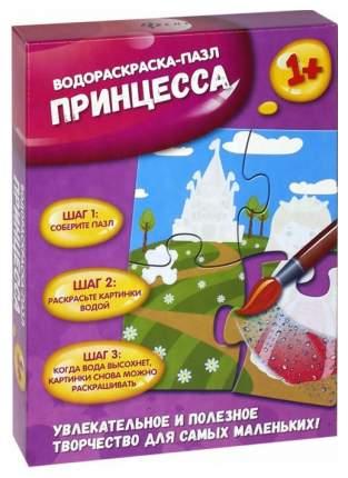 Раскраска Феникс Водораскраска-Пазл Принцесса