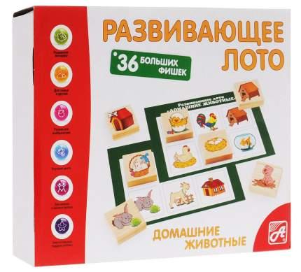 Семейная игра Анданте Лото Домашние животные Д462а