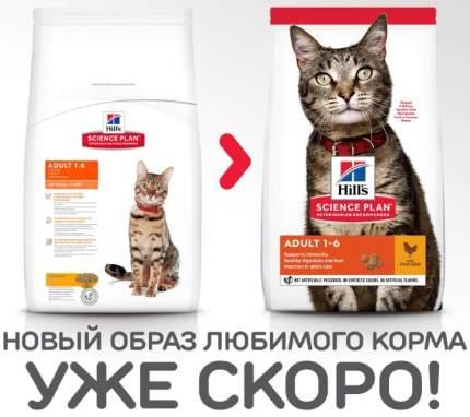 Сухой корм для кошек Hill's Science Plan Optimal Care, курица, 2кг
