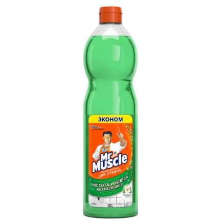 Чистящее средство для окон Mr.Muscle с нашатырным спиртом 500 мл