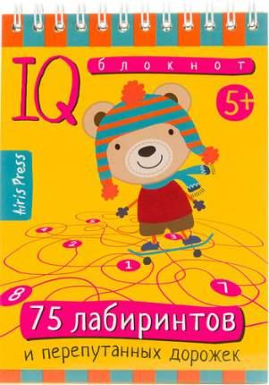 Обучающая книга АЙРИС Умный блокнот. 75 лабиринтов (25383)