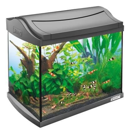 Аквариумный комплекс для рыб Tetra AquaArt Shrimps Discover Line, антрацит, 20л