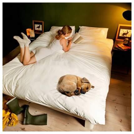 Комплект постельного белья NEWTONE nte339336 двуспальный