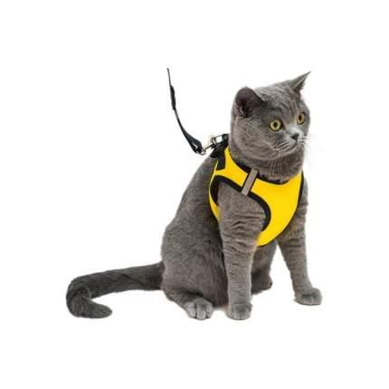 Комплект Дарэлл Шлейка+Поводок Конфетти-ТОП для кошек и собак обхват груди 32-38см, Желтый