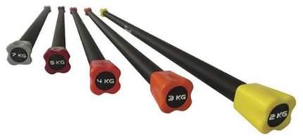 Бодибар PX-Sport BC213-6 120 см голубой 6 кг