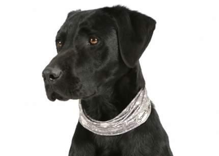 Повязка на шею для собак SCRUFFS Insect Shield Dog Snood с пропиткой от блох и клещей S