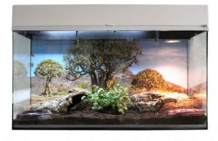 Террариум LUCKY REPTILE Стартовый комплект для Сухопутных Черепах, белый, 80 x 52 x 40 см