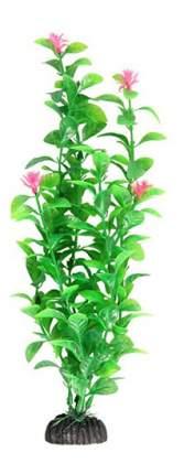 Laguna Растение аквариумное Незея цветущая, 30 см