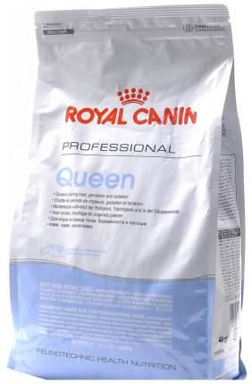 Сухой корм для кошек ROYAL CANIN Queen 34, в период течки, беременности и лактации, 4кг