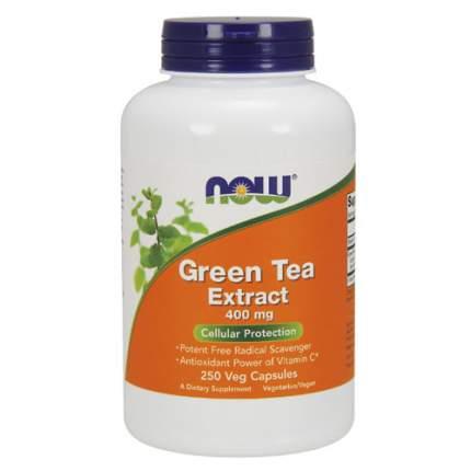 NOW Green Tea Extract 400 мг (250 капсул)  - экстракт зеленого чая