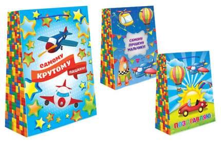 Пакет подарочный бумажный S2610 Для мальчиков, 3 вида 32x26x14 см (в ассортименте)