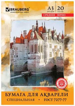 Бумага для рисования BRAUBERG 122908 белый 20 листов