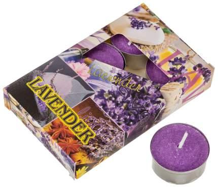 Набор свечей Adpal 348-489 Фиолетовый
