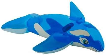 Надувная игрушка Intex Живая касатка с держателем с58523