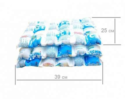 Многоразовый лёд Techniice Standart 10 листов