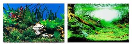 Фон для аквариума ferplast растительность 60x40