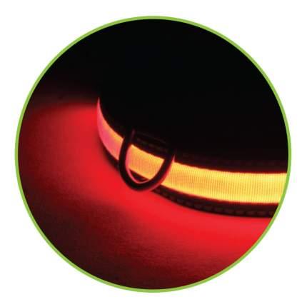 Triol LD06L Светодиодный ошейник Комфорт для собак, размер L