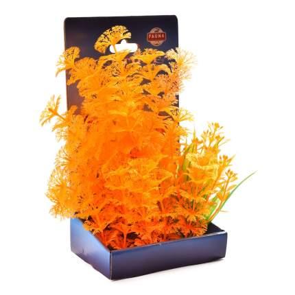 Растение аквариумное Композиция №70, 22 см