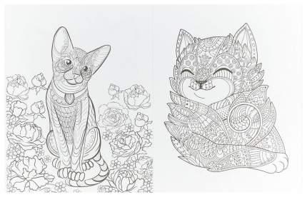 Книга Cats-2