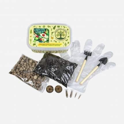 Набор для выращивания Giardino Verde Maxi 4477 лук, петрушка, укроп, перец