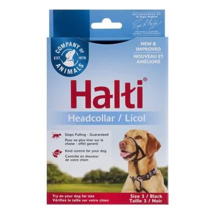 Недоуздок для собак COA Халти HALTI Headcollar, чёрный, Size 3