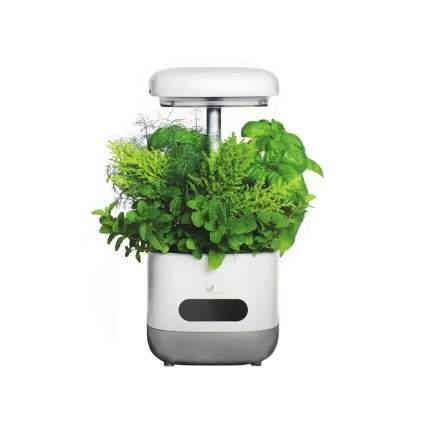Садовый комплект для растений Avatar 100