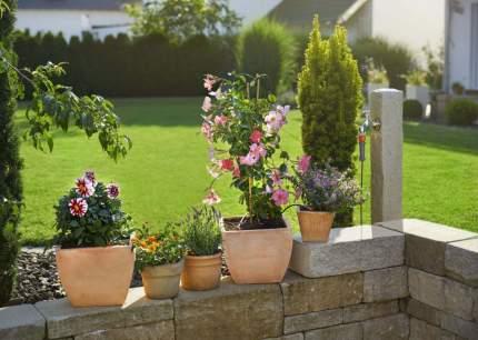 Набор для капельного полива Gardena 13000-34.000.00 на 5 растений