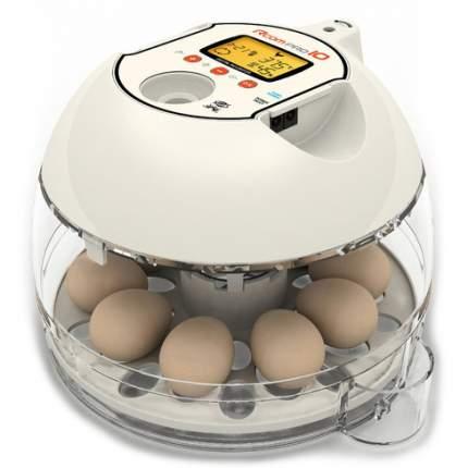 Инкубатор ручной Rcom 10 Pro на 10 яиц