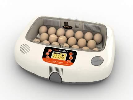 Инкубатор ручной Rcom 20 Pro на 20 яиц