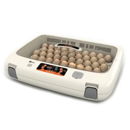 Инкубатор ручной Rcom 50 MAX на 50 яиц