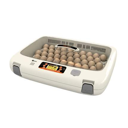 Инкубатор ручной Rcom 50 Pro на 50 яиц