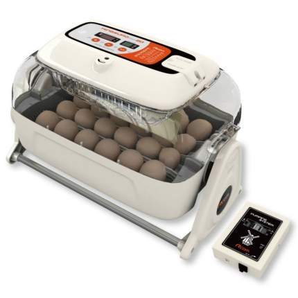 Инкубатор автоматический Rcom King Suro 20 MAX на 24 яйца