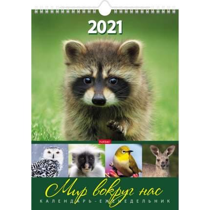 Календарь-еженедельник на 2021 г, настенный перекидной, 56 л Мир вокруг нас Hatber