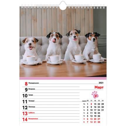 Календарь- Еженедельник на 2021 г, настенный перекидной, 56 л Четыре с хвостиком Hatber