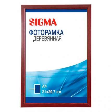 Фоторамка Sigma вишня А4 21 x 29,7 см