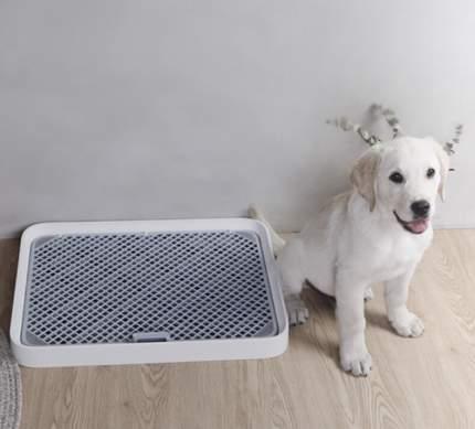 Лоток для собак Petkit Pura Dog, белый, 52 х 39 х 4,7 см