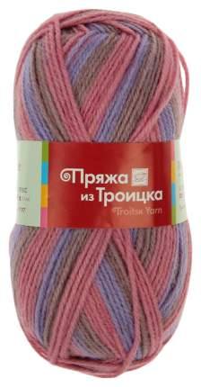 Пряжа из Троицка Подмосковная, 250 м, 10 мотков по 100 г, цвет: 7276 принт 10 шт.