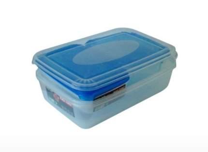 Набор контейнеров Plast Team 9988